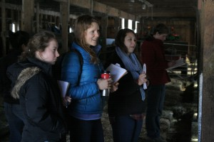 Students tour the cow-calf operation at Sweet Farm in Williamstown.