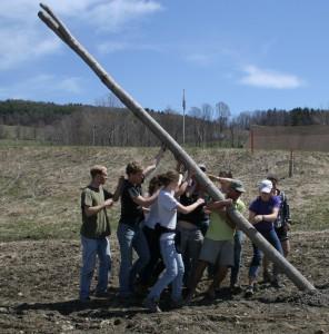 Students raise a hop pole at Hoppy Valley Organics.