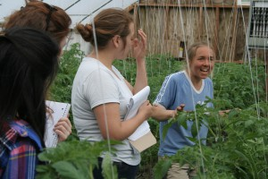 Lisa MacDougall shows students her greenhouse tomatoes at Mighty Food Farm in Pownal, VT.