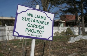 In 2010, the Williams Sustainable Growers planted a garden on the college president's lawn.